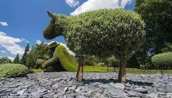 80个极美植物雕塑_23