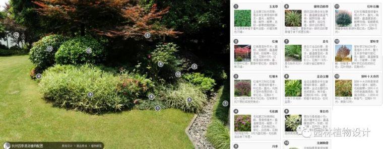 104组精彩植物配置案例(实景效果+植物品种)_91
