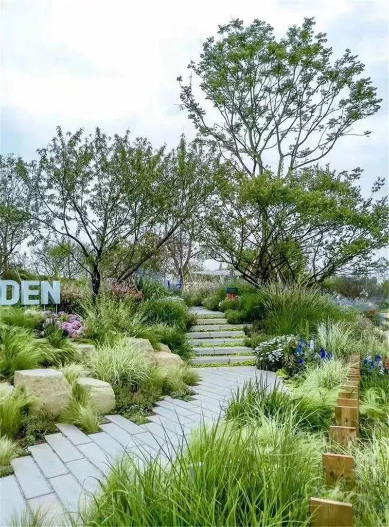植物造景·实用景观设计来一波_5