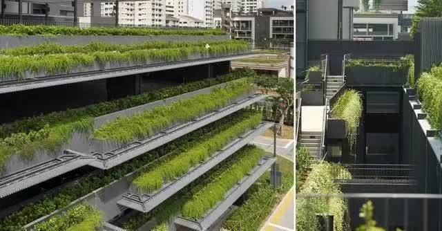 新加坡经典高端景观考察活动_68