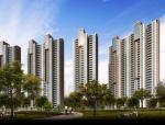 高层住宅项目管理组织策划书(图文并茂)