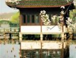 中式诗画园林 · 诗意栖居地