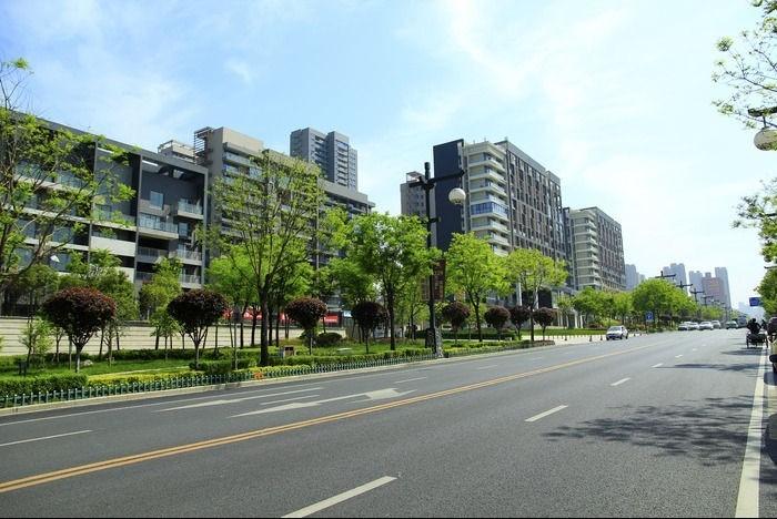 市政道路改造工程施工组织设计监理技术标