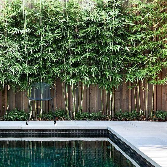 用心设计过的围墙,能让你家小院瞬间与众不同!_10
