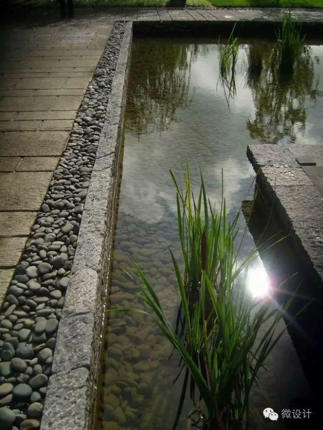 有了院子,一定要造一个水景_4