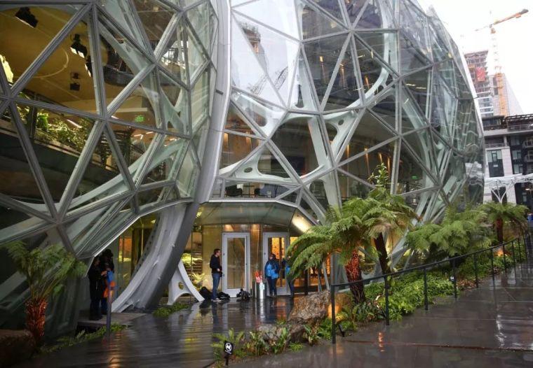 震惊!耗资40亿搬来热带雨林,这家公司为什么这么牛逼!_8