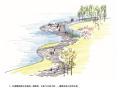 [成都]万华麓湖公园景观设计方案文本(生态,湿地)