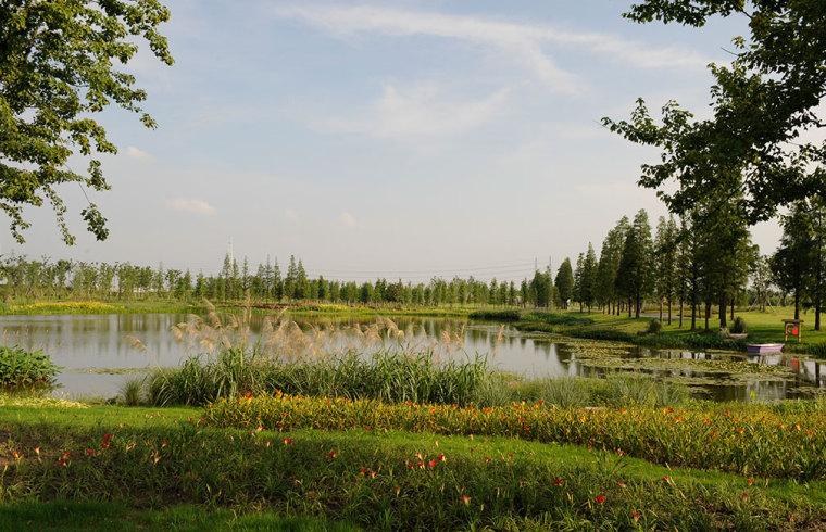 上海辰山植物园-8