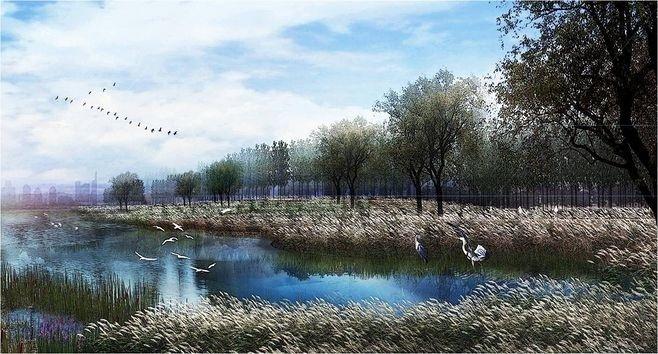 湿地公园景观设计要点_9