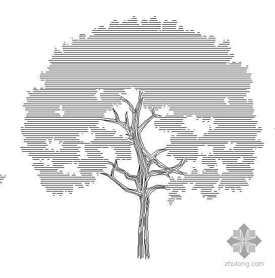 CAD景观植物图例