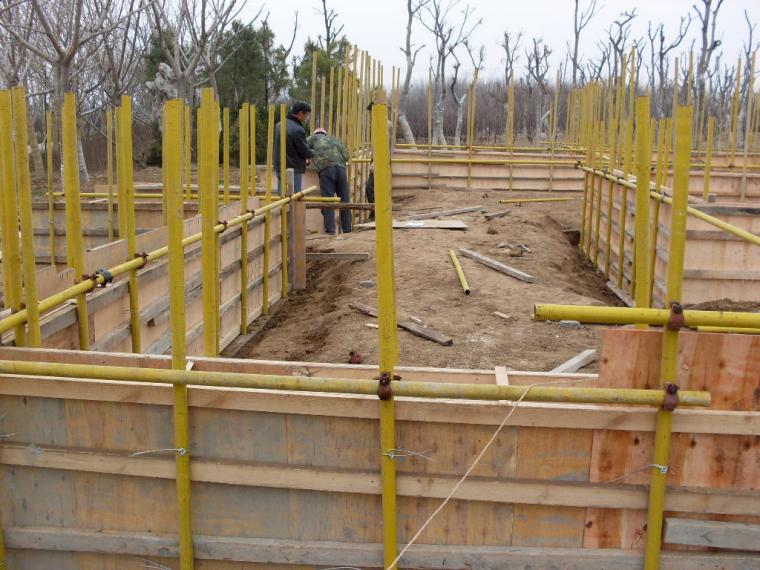 园林施工技术标准培训讲义
