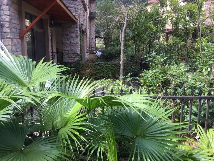 四种类型超小平米庭院设计