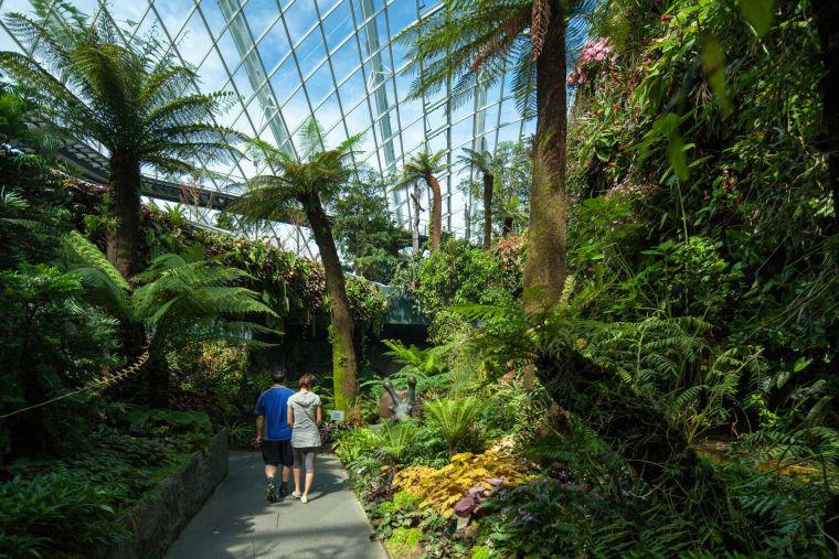 新加坡世界级超级温室花园-9