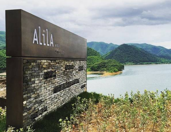 阿丽拉在中国_6