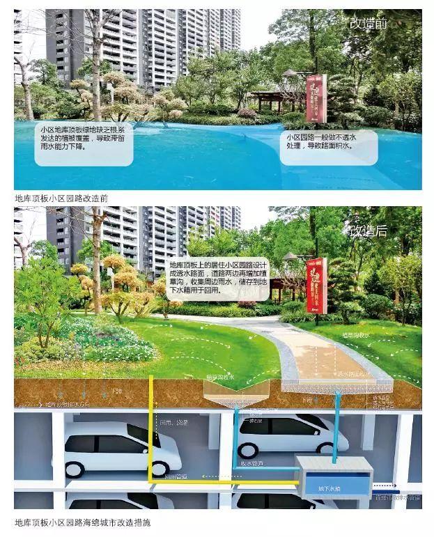 24种海绵城市设计措施全图解!_8
