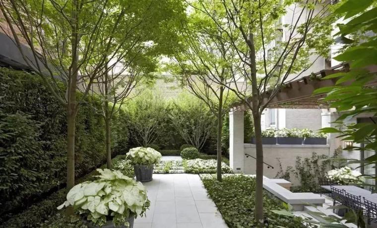 现代屋顶花园设计赏析_33