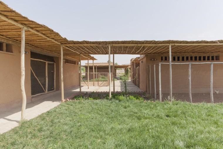 伊拉克动物辅助疗养中心-3