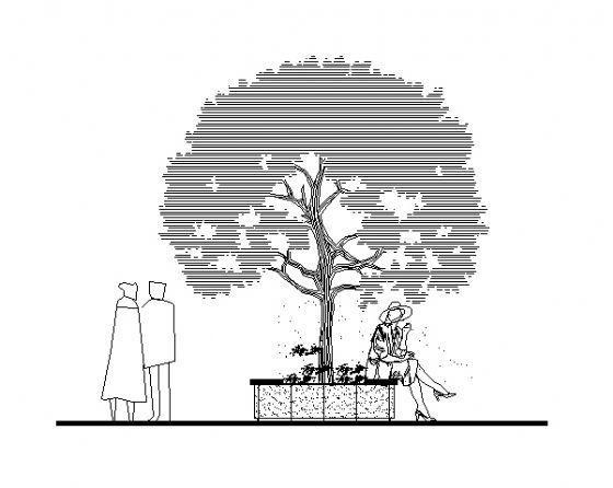 树穴详图1