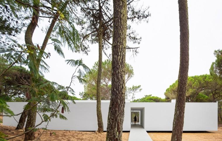 悬浮于松林沙地中的白色住宅外部实景图 (4)