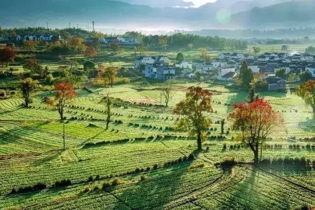 他建起这样一个农庄,将改变两三亿人的生活_12