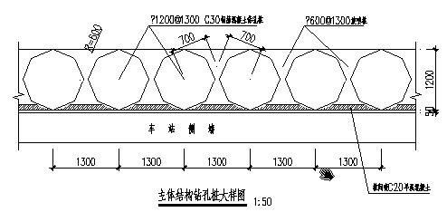 某地铁车站主体围护结构及支撑体系设计图