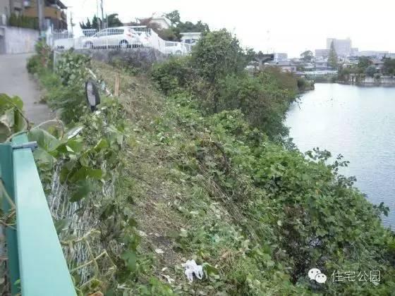 工程记录——这么窄窄的河边是怎么建造别墅的?