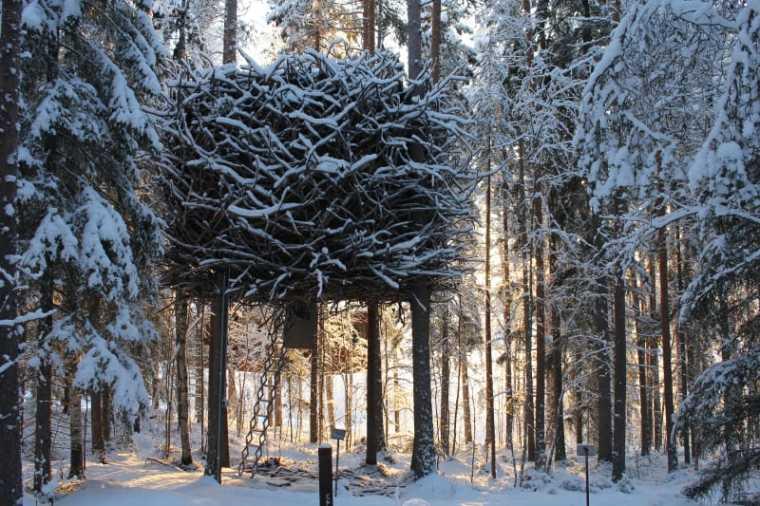 瑞典鸟巢树屋酒店客房