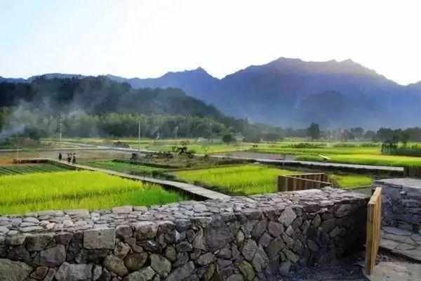 农田,才是最奢华的风景_6