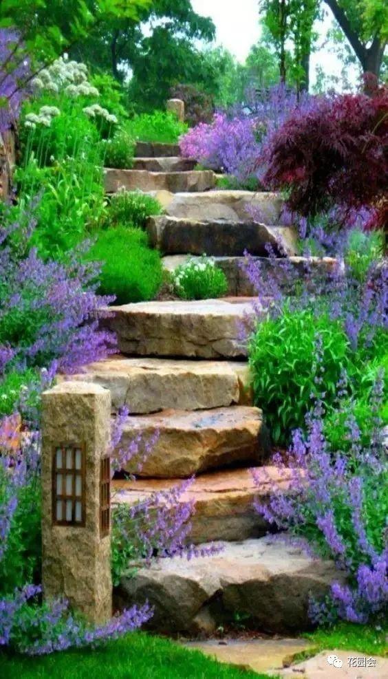 花草与石板的关系•花园小径_24