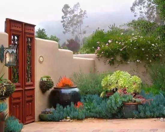 种满多肉的后院,原来比花园还美!_1