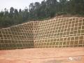 路提高边坡桩锚与悬臂式挡墙联合支护特性分析与监测!