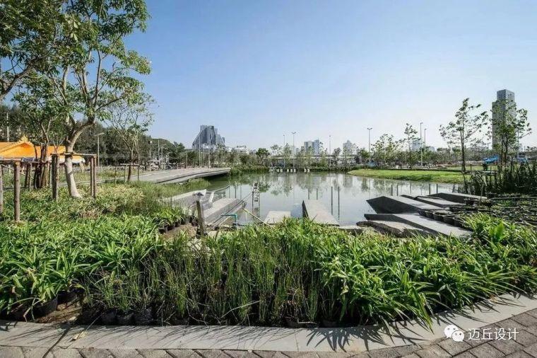 2019WLA世界建筑景观奖揭晓|生态创新_33