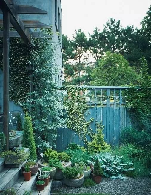 不同风格的庭院植物配置,超详细!_6