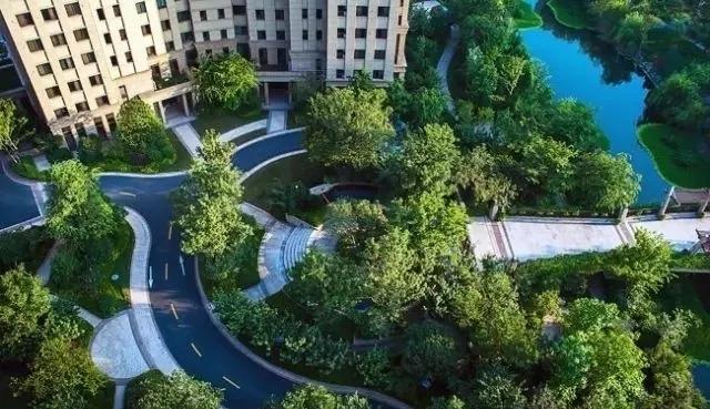 景观设计植物配置教程,景观设计实战教学,园林景观植物设计