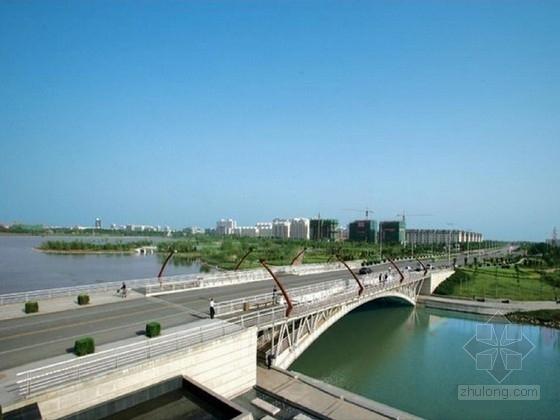 [山东]国际知名公司设计单跨上承式空腹拱桥施工图(63张 含初步设计)