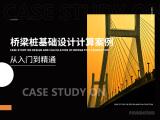 桥梁桩基础设计计算案例从入门到精通