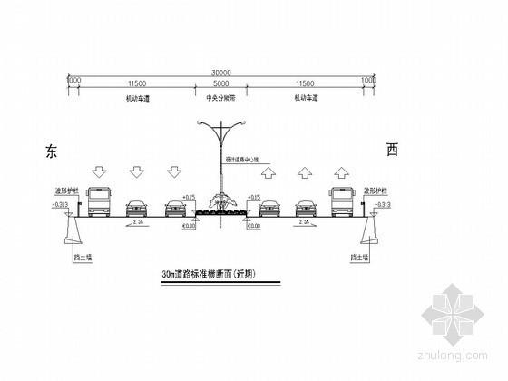 30米~55米道路标准横断面图