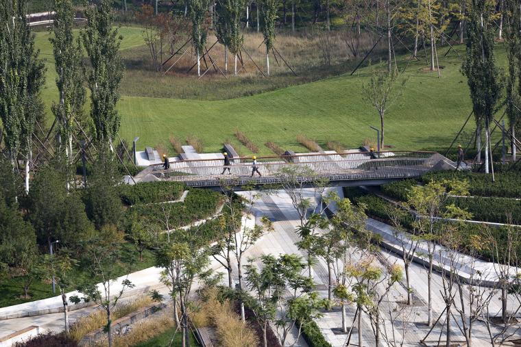 北京保险产业园核心绿地景观