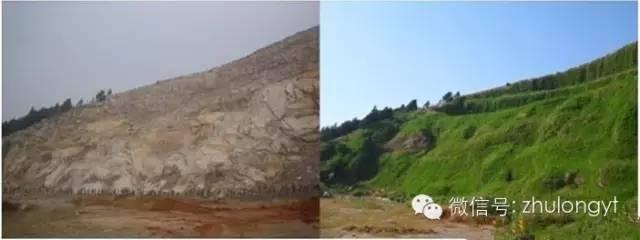 常见基坑支护及生态边坡支护形式特点分析!_10