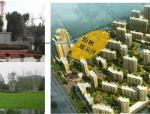 [湖北]大规模住宅开发项目整体定位与营销战略发展报告(175页)
