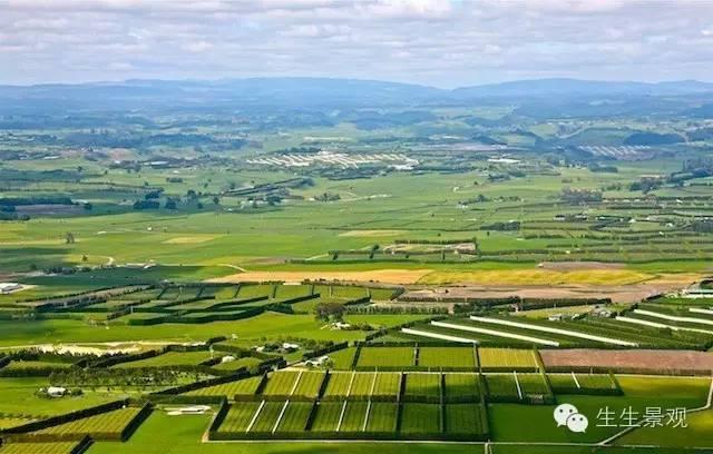 农业景观的意义_72
