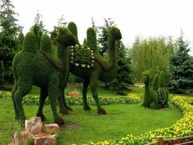80个极美植物雕塑_17
