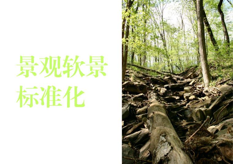[景观]景观标准化设计指引软景配置标准