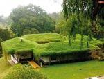 又一波超生态的高颜值绿色屋顶来袭!